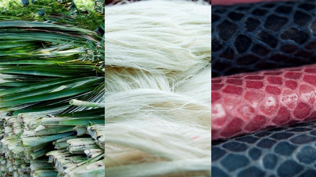Couro ecológico utiliza fibras da folha de abacaxi que são descartadas stylo urbano