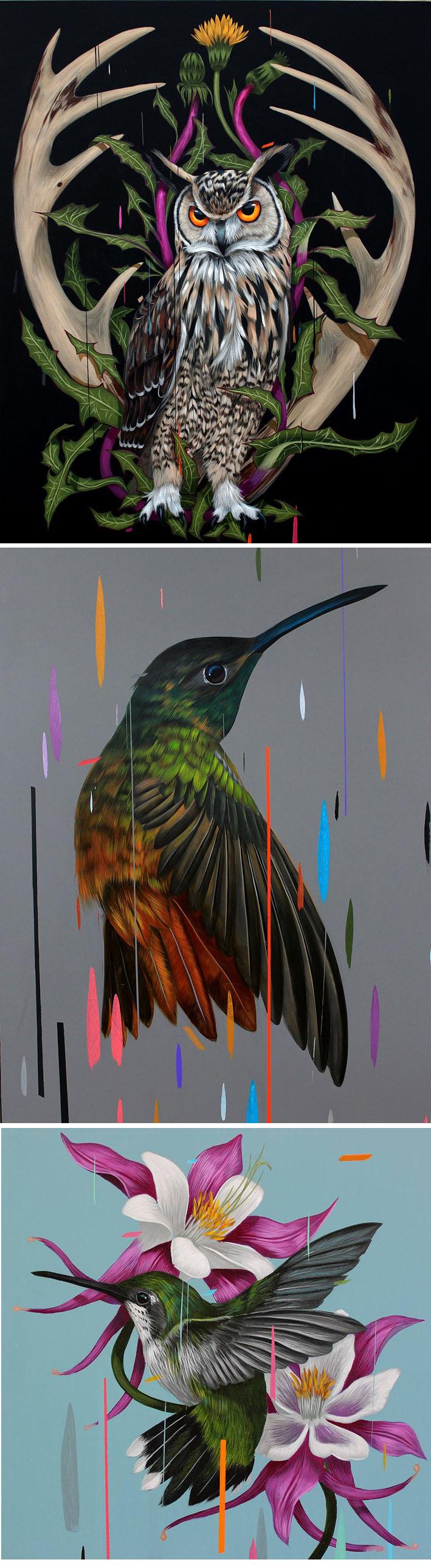Pinturas de pássaros respingadas com tintas coloridas por Frank Gonzales stylo urbano