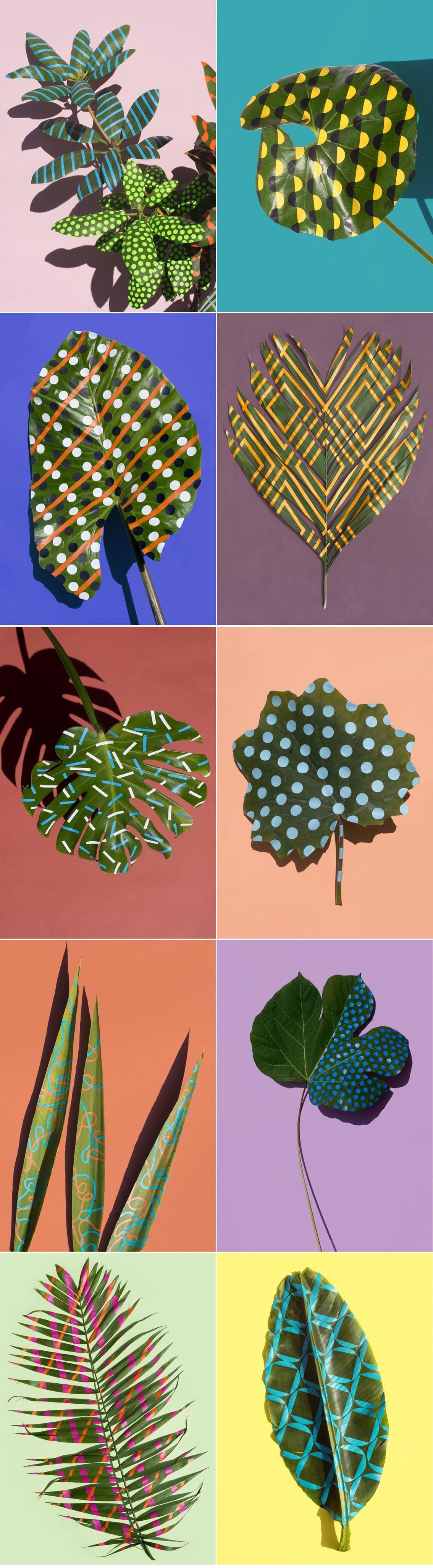 Plantas tropicais com releitura pop art de Sarah Illenberger stylo urbano