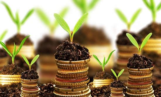O capitalismo sustentável: Nossa melhor esperança para o futuro stylo urbano-6