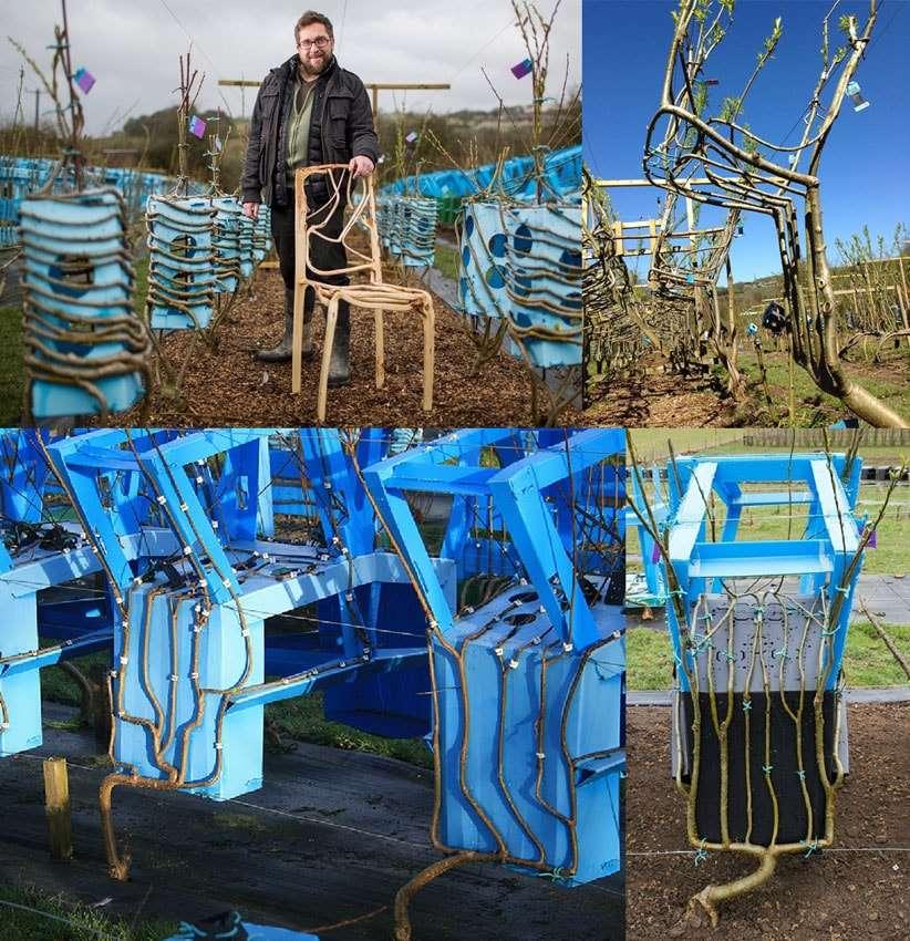Full Grown: Árvores cultivadas nas formas de cadeiras, luminárias e mesas stylo urbano