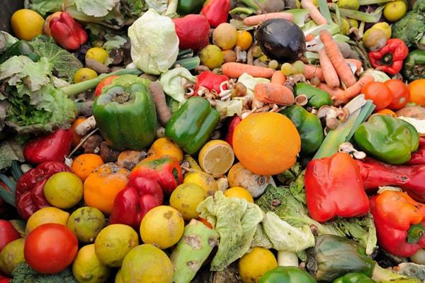 Projetos sustentáveis de economia circular transformam o desperdício de alimentos em novos produtos stylo urbano
