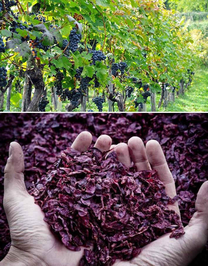 WineLeather: o primeiro couro vegetal derivado dos resíduos do vinho stylo urbano-1