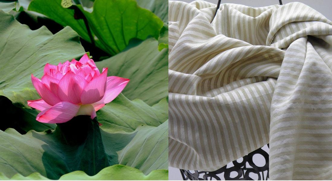 da flor de lótus se produz o tecido mais espiritual e ecológico do