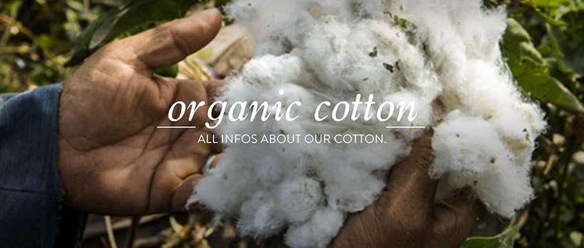 Uma camiseta de algodão orgânico pode ser pior para o ambiente do que algodão normal stylo urbano-1